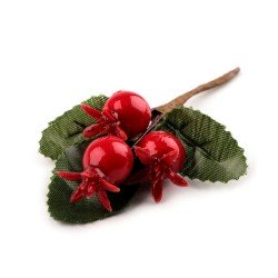 Branche de cynorrhodon, fruit de l'églantier / Décoration de Noël, couronne de l'Avent
