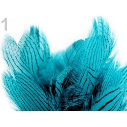 01 - Plumes rayées bleu turquoise 4 à 12 cm