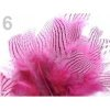 06 - Plumes rayées rose fuchsia 4 à 12 cm