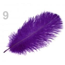 1 grande plume 25 cm autruche