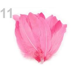 5 plumes d'oie 16-21 cm