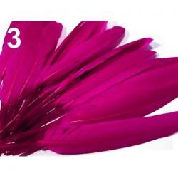 Plumes canard 9-14 cm