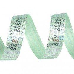 Ruban de satin vert poudre brode de sequins argent 15 mm